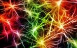 Нейрогенез: как генерировать новые клетки мозга