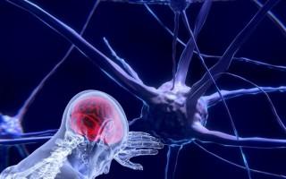 Никотин помогает раковым клеткам проникнуть в мозг — открытие ученых 2020 года
