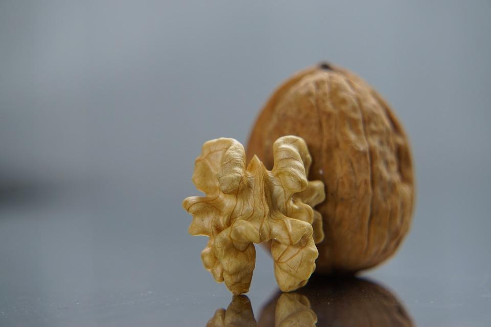 Культура питания - грецкий орех очень полезен для головного мозга