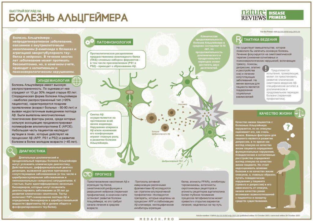 Коротко и понятно о болезни альцгеймера