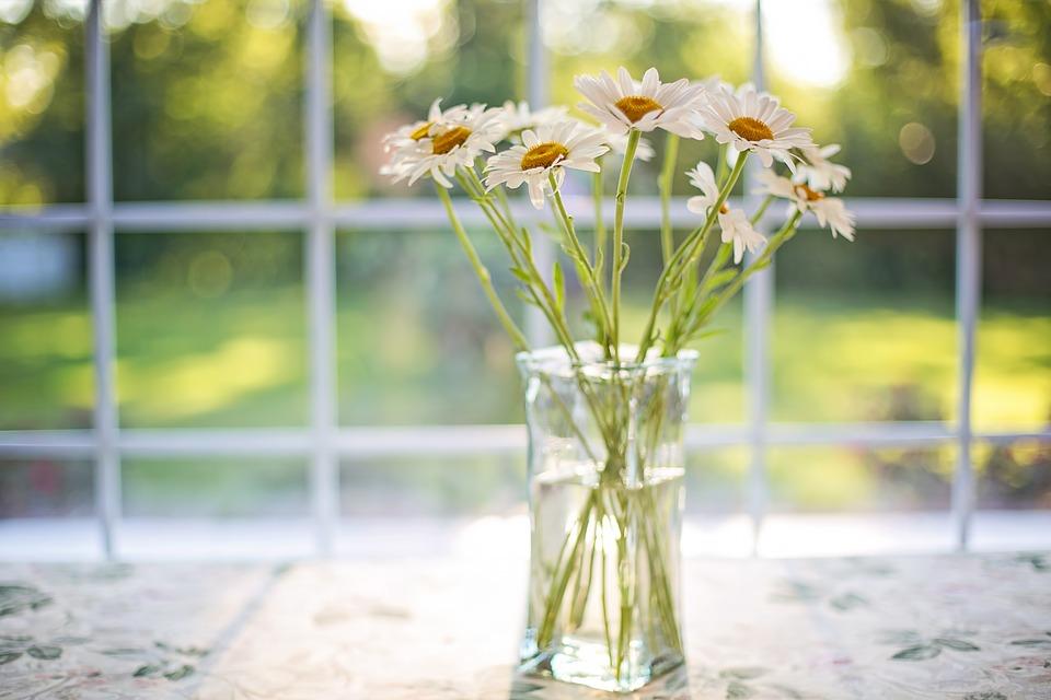 логические загадки - кто разбил вазу